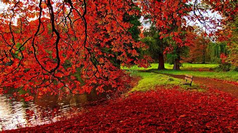 autumn desktop wallpaper  hddesktopwallpaperorg