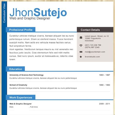 Professional One Page Resume Exle by 35 Best Cv And R 233 Sum 233 Templates