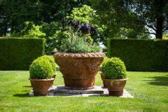 Hortensie Umpflanzen Im Topf : buchsbaum kombinieren was passt dazu ~ Orissabook.com Haus und Dekorationen