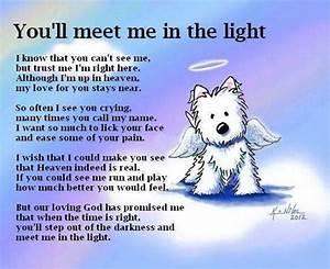 dog loss poem rainbow bridge