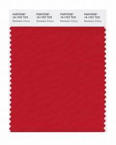 BUY Pantone Smart Swatch 19-1757 Barbados Cherry