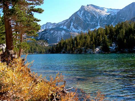 Yosemite National Park Lodging Chalet Region