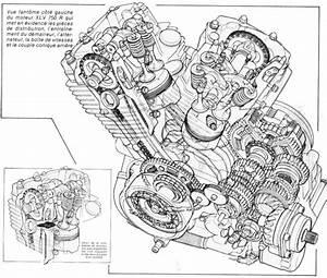 Honda Shadow 750 Fiche Technique : xlv 750 rd 1983 1988 la petite histoire donn es techniques ~ Medecine-chirurgie-esthetiques.com Avis de Voitures