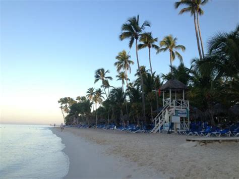 be live canoa chambre deluxe la chambre picture of be live collection canoa bayahibe