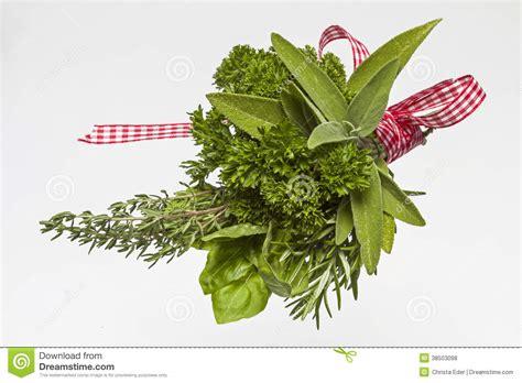 herbes de cuisine photos libres de droits image 38503098