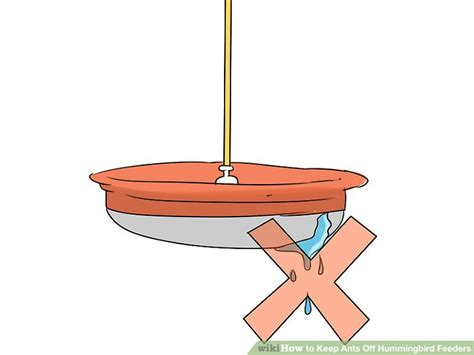 how to keep ants away from hummingbird feeder 3 ways to keep ants hummingbird feeders wikihow
