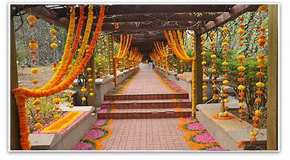 Indian Flower Marigold Flowers Garlands Decorations Weddings