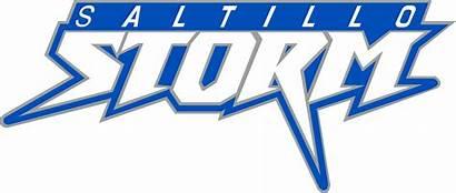 Storm Saltillo 8u Baseball Ms Documents Sports
