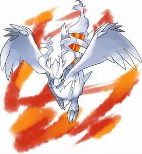 Reshiram - Pokémon   page 2 of 3 - Zerochan Anime Image Board  Pokemon
