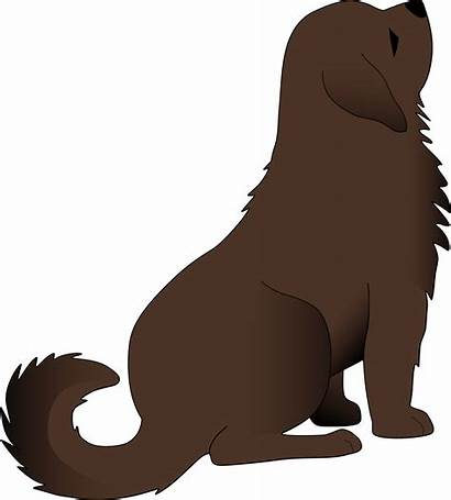 Dog Clipart Brown Clip Lion Dogs Cliparts