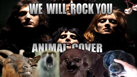 We Will Rock You (animal Cover)