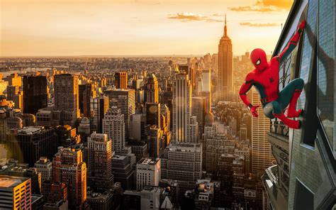 spiderman homecoming wallpaper high quality resolution