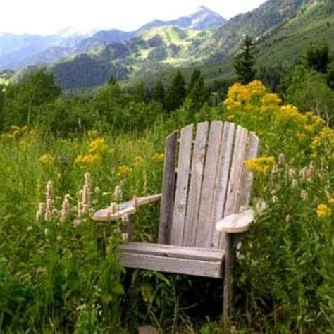made adirondack chair rustic barn wood furniture by