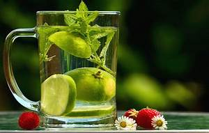 Free Picture  Water  Lemon  Leaf  Mint  Strawberry  Daisy