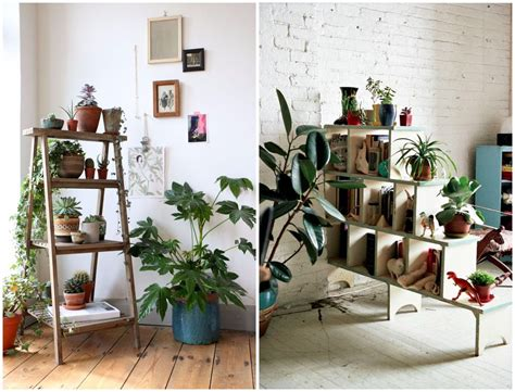 Garden Decoration With Plants by 9 Indoor Plants You Can T Kill So Easily Atap Co