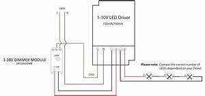 1 10v Dimming Wiring Diagram  U2013 Volovets Info