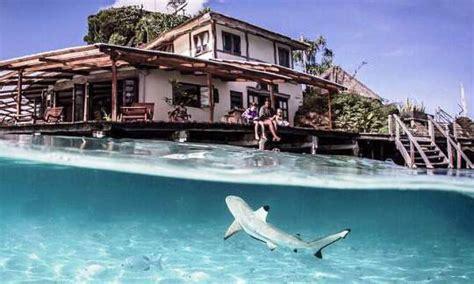 Raja At Dive - raja at dive resorts indonesia dive the world vacations