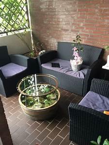Miniteich Pflanzen Set : balkon teich moderne dekoration dekor balkon teich lebendfutter zucht wasserfl he im ~ Buech-reservation.com Haus und Dekorationen
