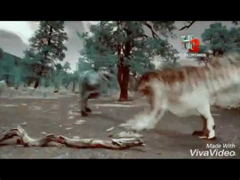 Luta Jurassica Rex Nanotirano Youtube