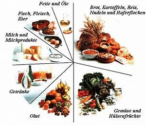 Kalorienbedarf Zum Abnehmen Berechnen : benni 39 s di t 2 makroverteilung di t makros berechnen makros beim abnehmen fett verlieren ~ Themetempest.com Abrechnung