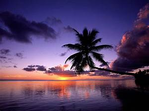 tropical island beach scenery sunset wallaper tropical ...