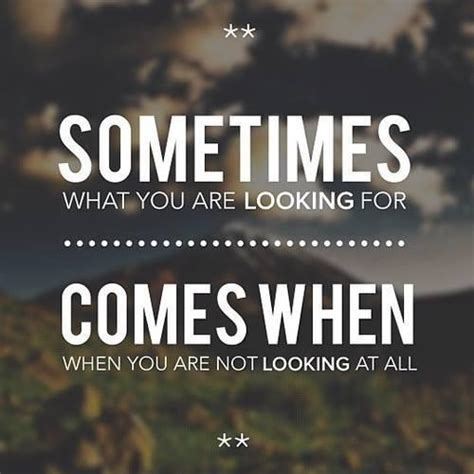 you look not shabby looking for love quotes quotesgram