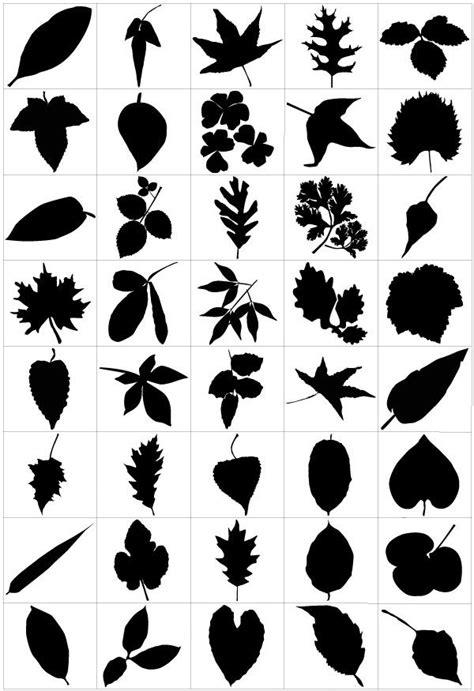 pin  mina krtova  kindergarden needle leaves leaf