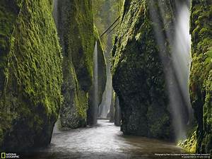 Nature, Landscape, National, Geographic, Trees, Rock, Moss, Plants, River, Waterfall, Valley