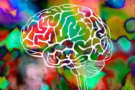 hallucinogen   canada  facts drug facts