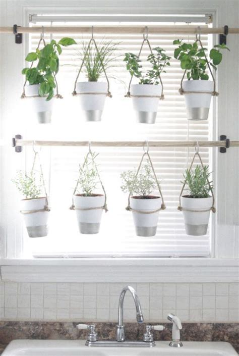Growing Herbs In Kitchen Window by Top 25 Best Kitchen Garden Window Ideas On