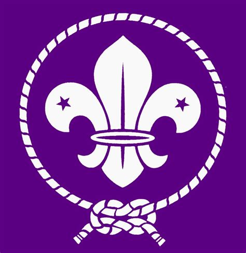 Scouting Encyclopedia 2010