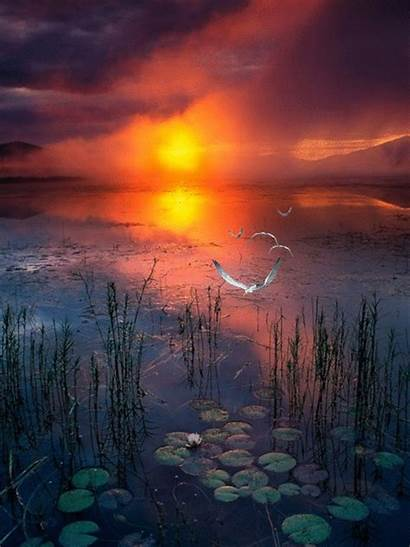 Sunset Sunrise Nature Mountains Pond Hadrianus Fog