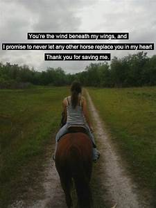109 best Cowgir... Horse Owning Quotes