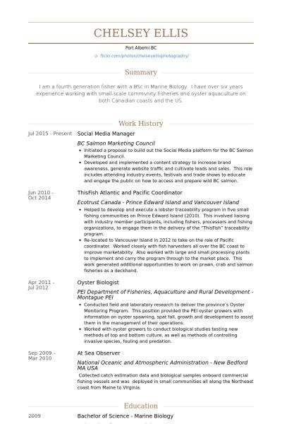 11691 social media marketing resume social media marketing resume sle best resume gallery