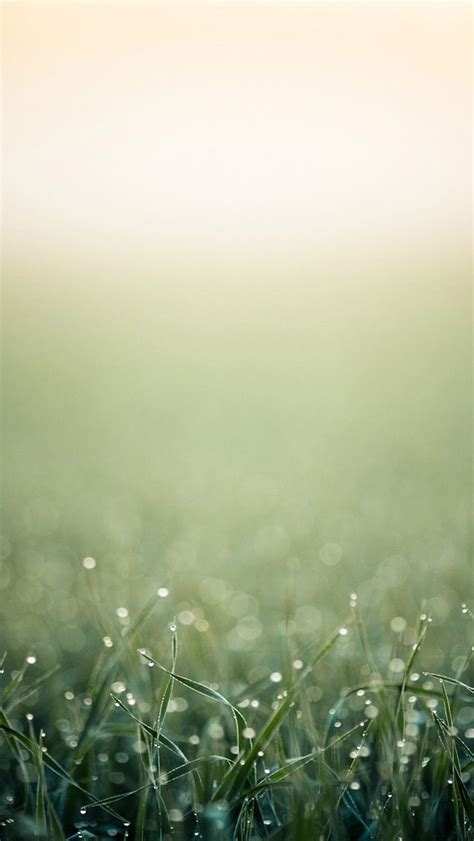 images  iphone  wallpapers  pinterest