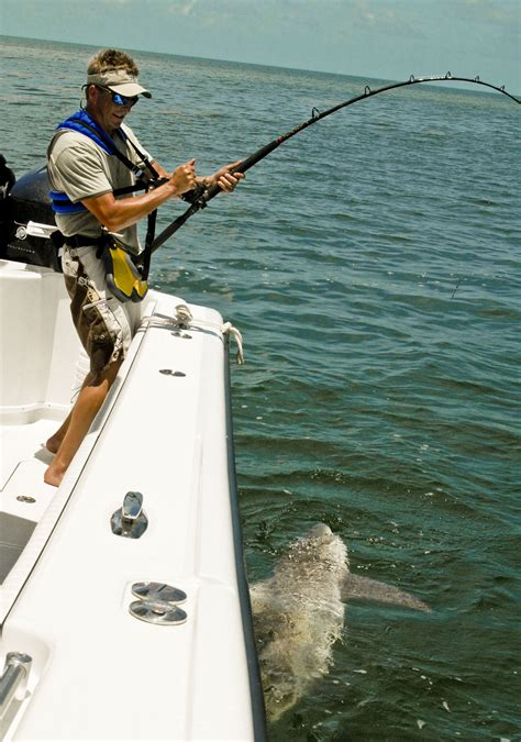 bait keys florida shark fishing