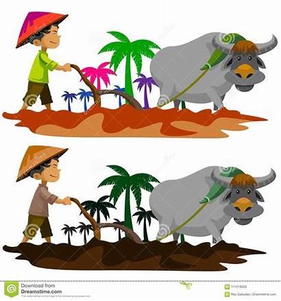 Farming Philippines Traditional Carabao Illustration