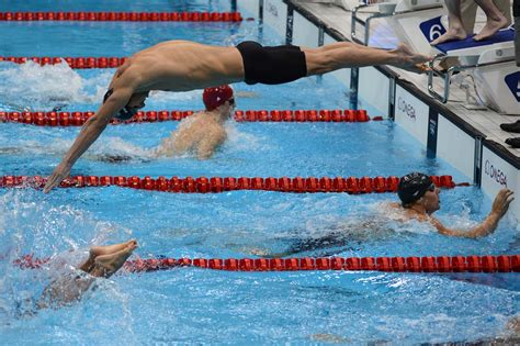 michael phelps dive august 5 photo brief michael phelps ends olympic career