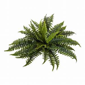 Artificial Plant- Boston Fern Large Higheight Home & Living