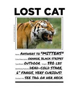 lost cat lost cat t shirt t shirts intelligently tees