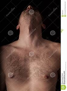 Chest And Neck Stock Photo