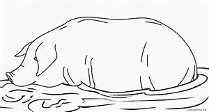 Pig Face Coloring Page - Diannedonnelly.com