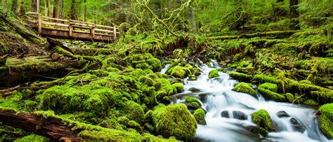 Take A Hike… In America's Most Beautiful National Parks ...