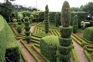 filefunchal botanical garden img 1806jpg wikimedia commons With whirlpool garten mit bonsai ligustrum