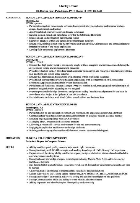 senior java application developer resume sles velvet