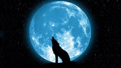 Howling Moon Wolf Wallpapers Wallpapertag Retina