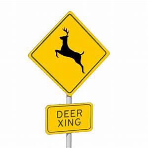 Is Wheeler Branch worth the drive | Kayak Fishing | Texas ...