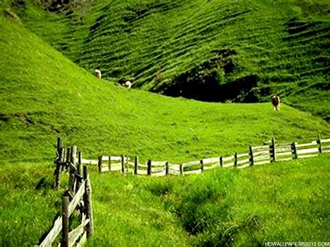 Beautiful Sceneries Of Nature For Wallpaper Nature Scenes Wallpaper Wallpapersafari