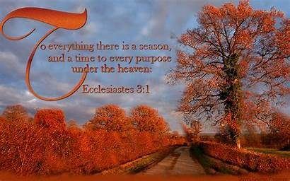 Season Everything There Every Purpose Heaven Autumn