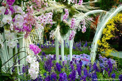 gardens   bay orchid extravaganza adventures
